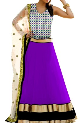 Ethnic Net Lehenga with Banarsi Brocade Choli