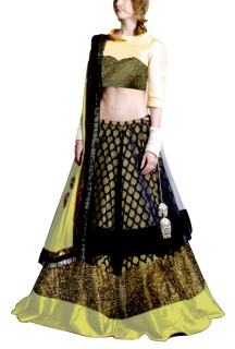 Golden Embroided York Style Choli with Double layer  Lehenga Clubed with Golden Duptta