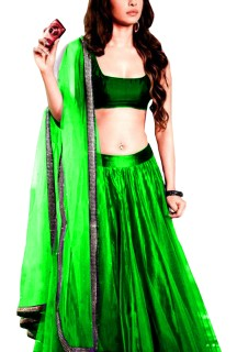 Women's stylish lehenga choli Free Size